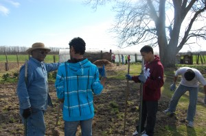 Students from UM and MSU discuss small scale agriculture with Frank Wilburn at his farm outside of Lambert, MS.